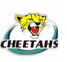 the_cheetahs_rugby_logo